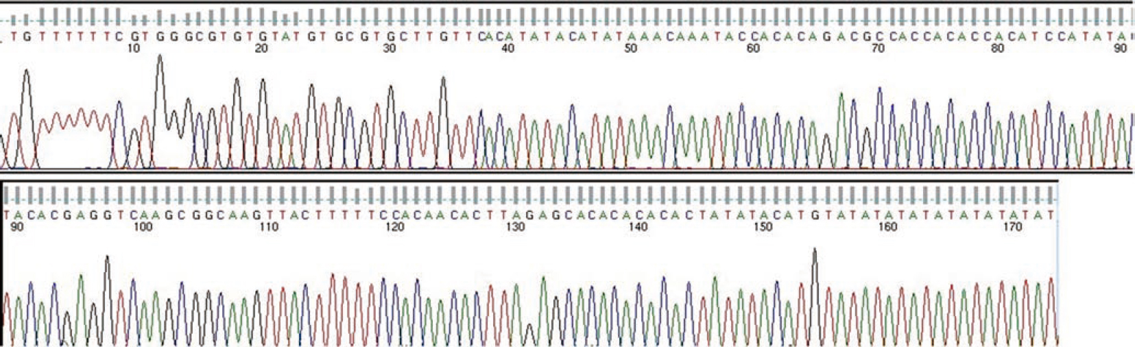 Figure 4: Pathogenic sequencing of <i>Trypanosoma lewisi</i>.